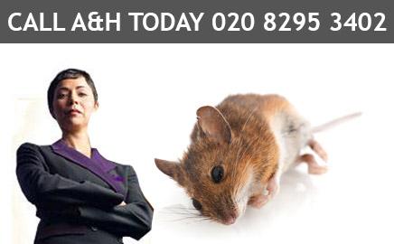 A&H Pest Control Services