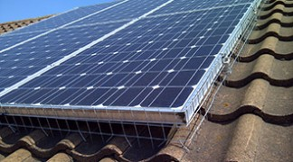How To Get Rid Of Pigeons Under Solar Panels Pigeon