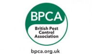Pest control kentish town