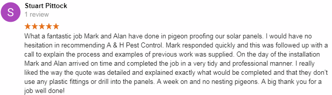 borehamwood pigeon control