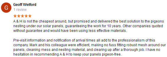 clapham pigeon control