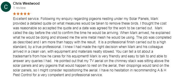 surrey quays pigeon control