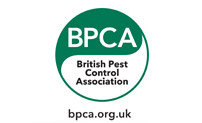 pest control services near me