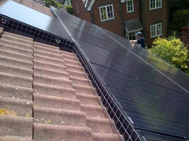 pigeon protection solar panels