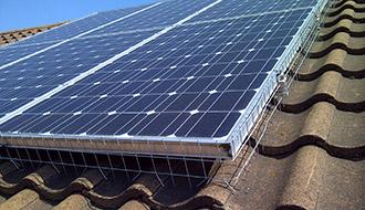 Solar Panel Bird Prevention