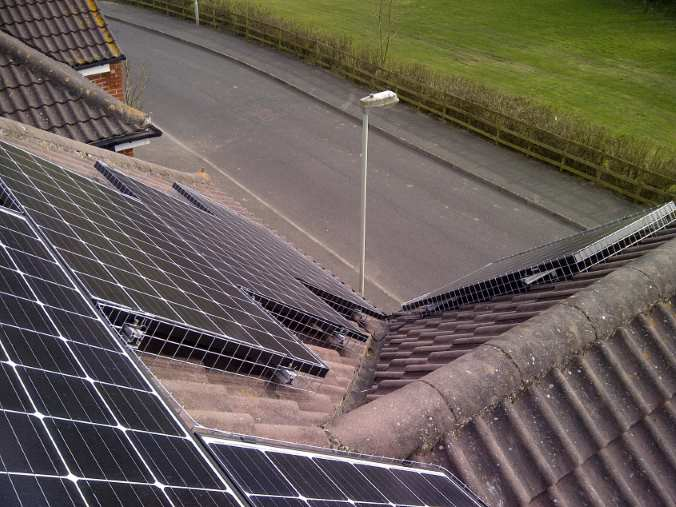 solar panels and pigeons